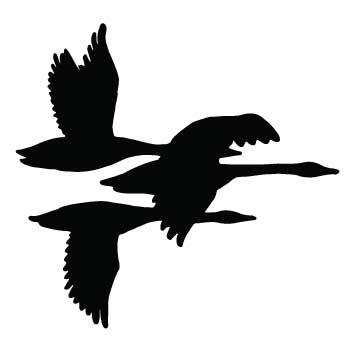 360x360 Bird (Geese Flying) Memorialization Amp Personalization
