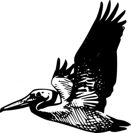 420x425 Flying Pelican Clip Art Vector, Free Vector Graphics