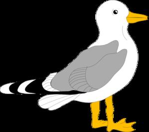 299x264 Pelican Clipart Flying Pelican Silhouette
