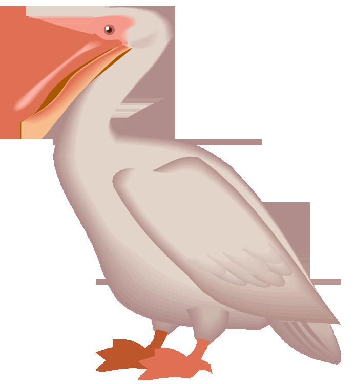 695x750 Pelican Clipart Flying