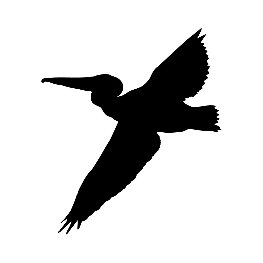 1042x1042 Pelican Silhouette Flying Wings
