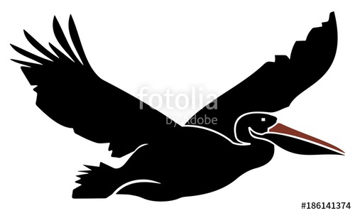 500x300 Silhouette Of Flying Pelicans Stock Image And Royalty Free Vector