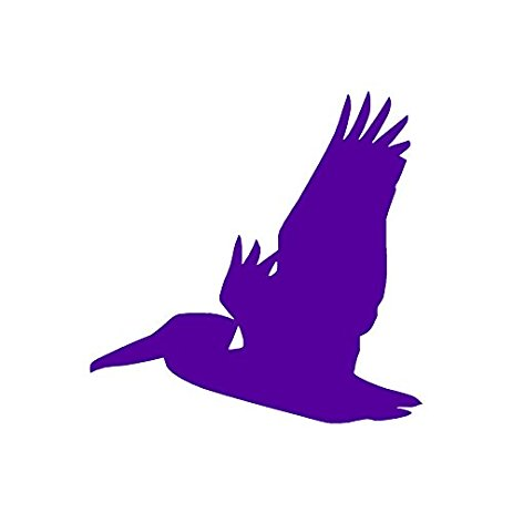 463x463 Flying Pelican Bird