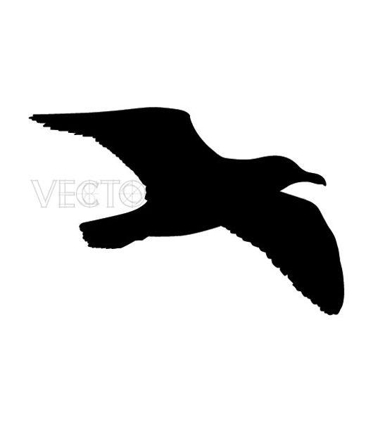 530x600 Seagull Silhouette Tattoo