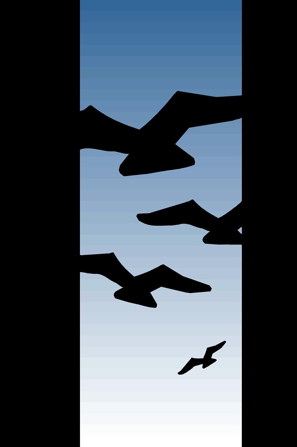 958x1443 Seagull Clipart Bird Fly
