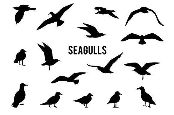 580x386 Silhouettes Of Flying Seagulls Silhouette