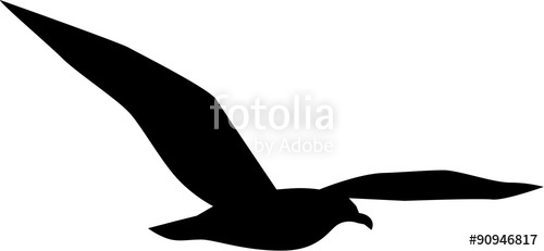500x231 Simple Seagull Flying Stock Image And Royalty Free Vector Files