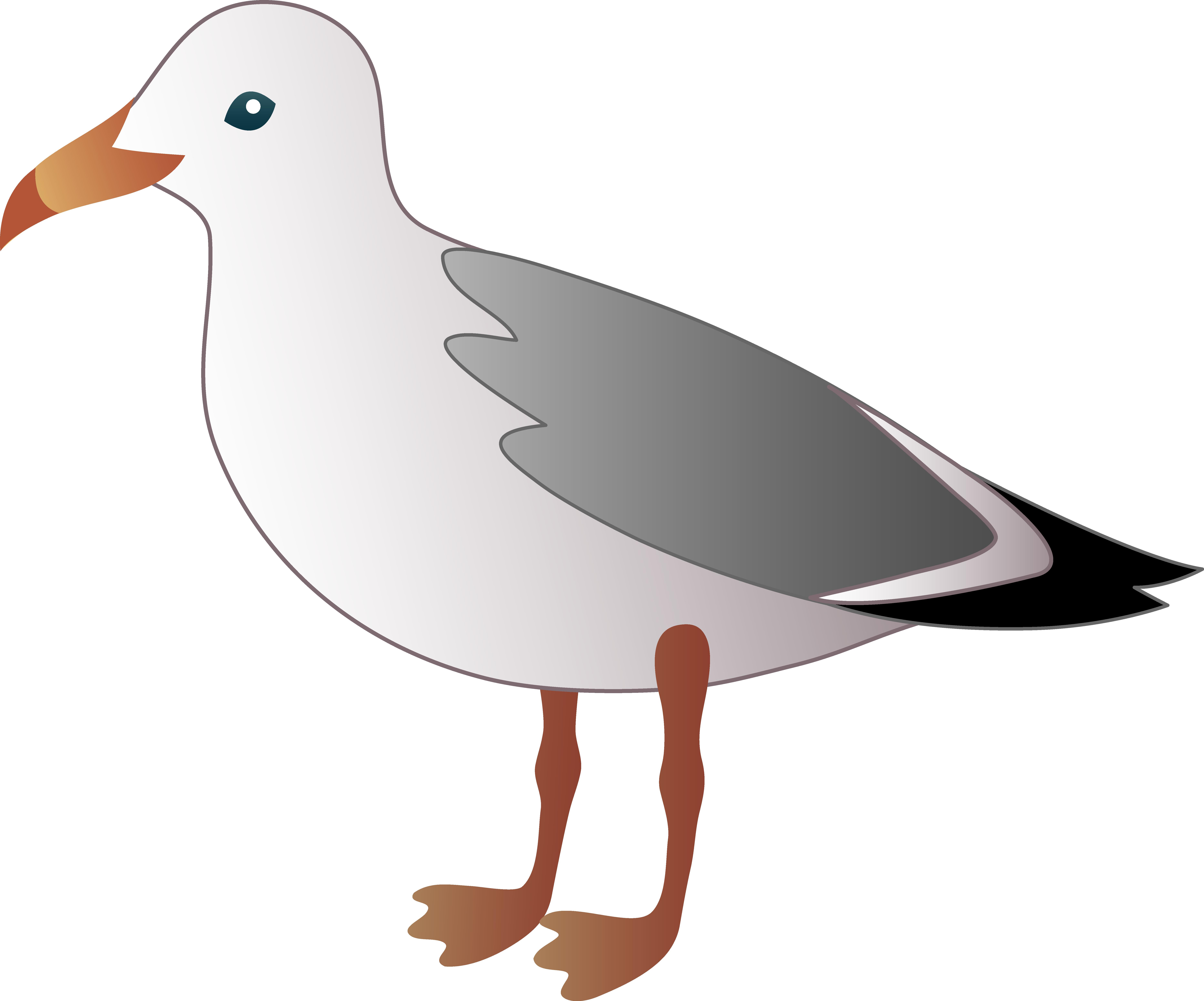 7458x6204 Clipart Seagulls