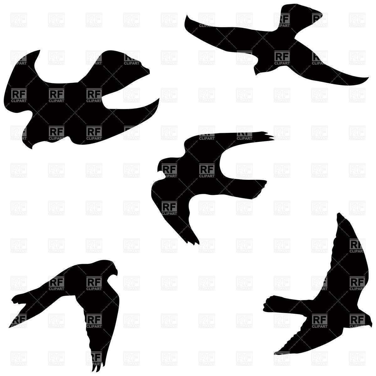 1200x1200 Flying Falcon Silhouettes Royalty Free Vector Clip Art Image