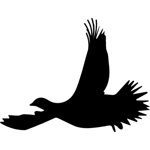 626x626 Grouse Bird Flying Silhouette Icons Free Download