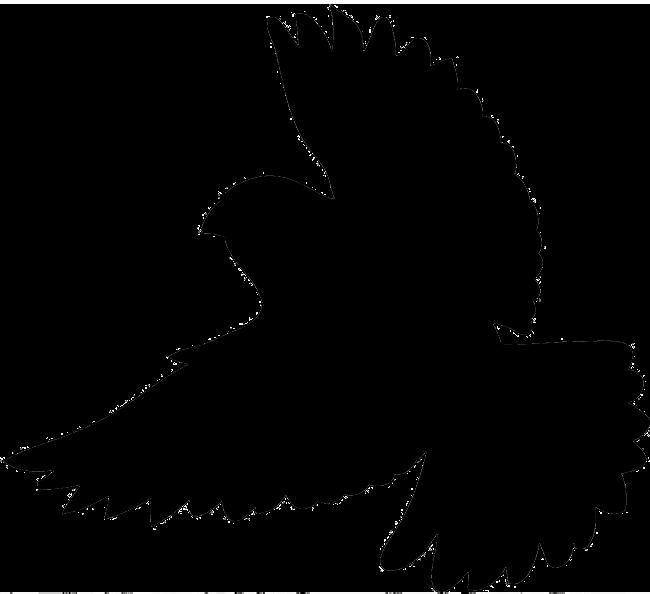 650x594 Bird Silhouette Flying Crow Silhouette Danaspdf Top Clip Art Image