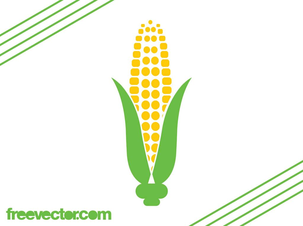 1024x765 Food And Nature Vector Graphics A Corn Cob. Stylized Image