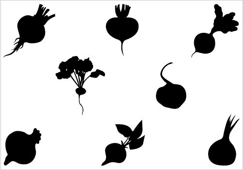 502x351 Beetroot Silhouette Vector