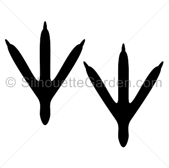 336x334 Bird Foot Clipart Clip Art Library Feet