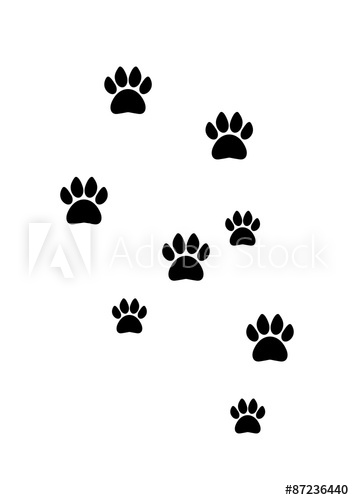 Footprint Silhouette Vector