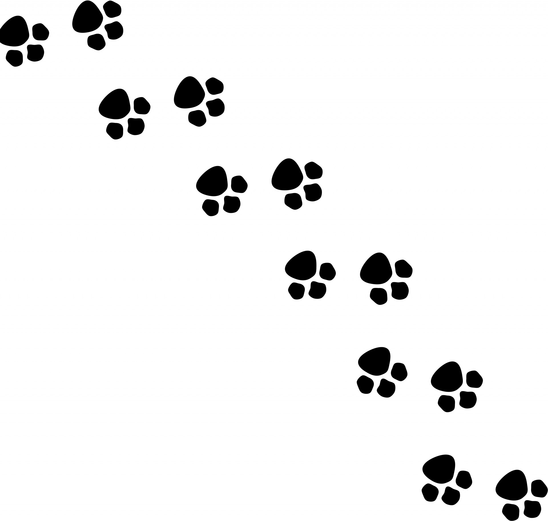 1920x1826 Animal Footsteps Silhouette Free Stock Photo