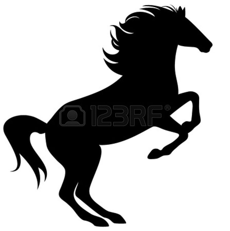 736x740 18 Best Heste Images On Silhouettes, Horse Farms