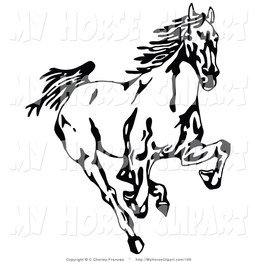 1024x1044 Clip Art Of A Black And White Wild Mustang Horse Running Forward