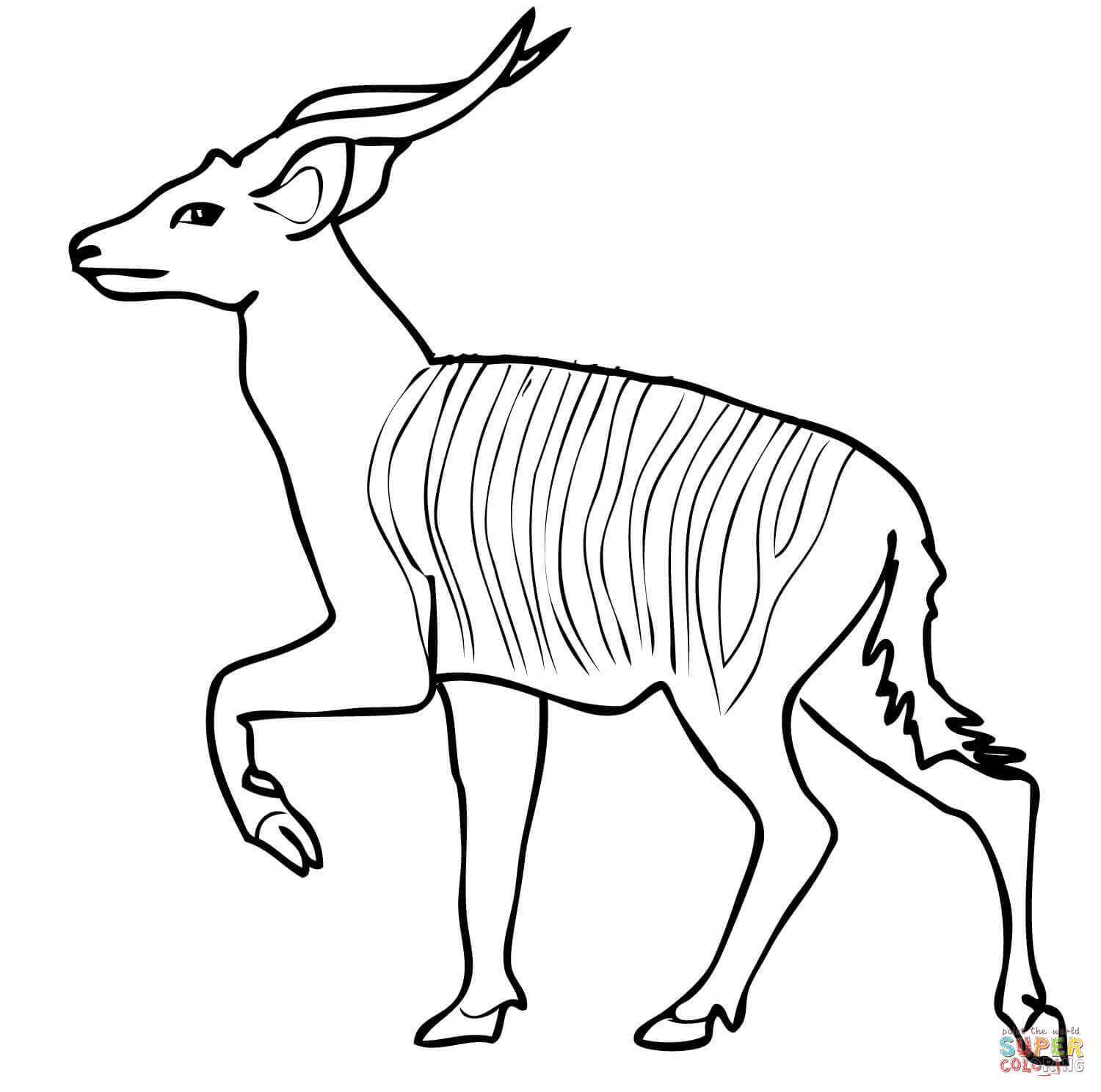 1500x1488 African Forest Antelope Bongo Coloring Page Free Printable