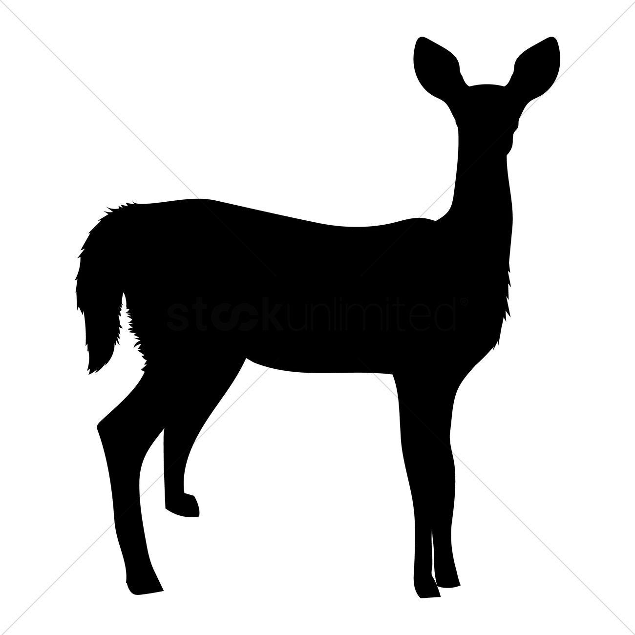 1300x1300 Nature Deer Deers Animal Animals Mammal Mammals Animals Birds Bird