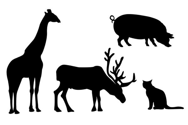 600x400 Nice Free Animal Silhouettes. Need More Animal Silhouette Brushes