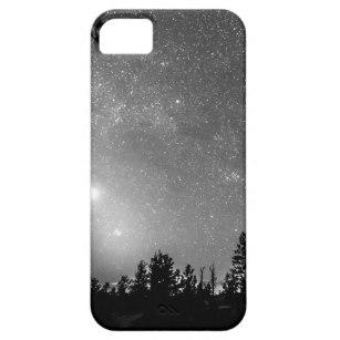 307x307 Tree Silhouette Iphone Se Amp Iphone 55s Cases Zazzle