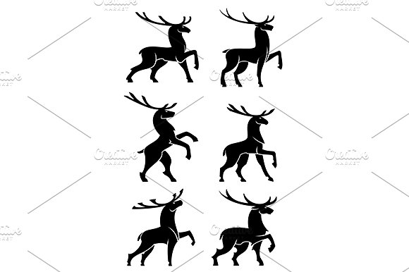 580x386 Wild Forest Bull Elks Or Deers Bull Elk, Elk And Silhouette