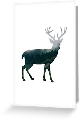 277x415 Buck Deer With Misty Evergreen Forest Woods Silhouette