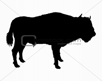 340x272 Image 1533908 Bison Shown In Form Of A Black Silhouette