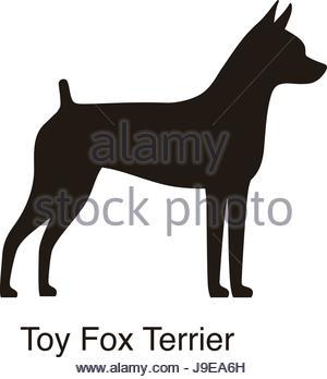 300x348 Fox Terrier Silhouette Stock Vector Art Amp Illustration, Vector