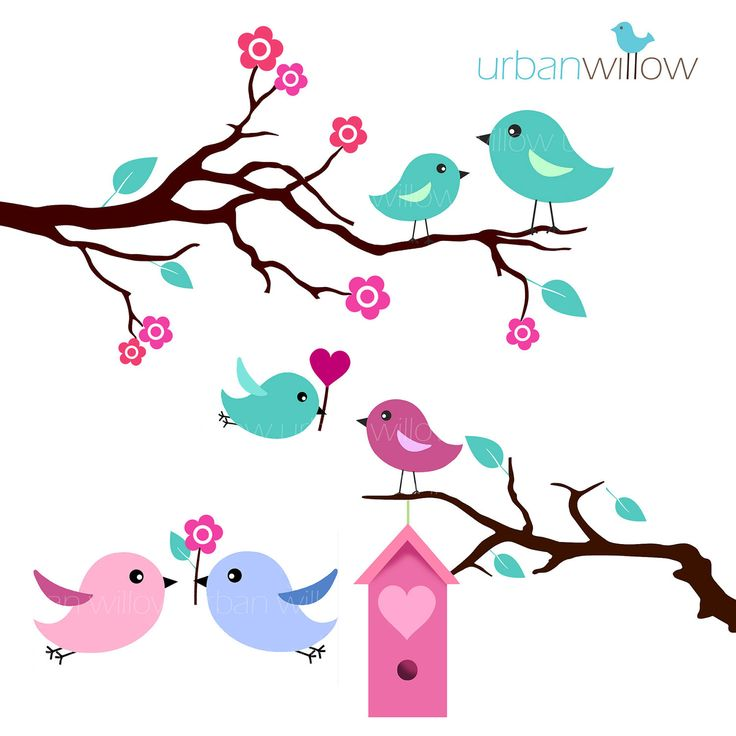 736x736 Turquoise Clipart Bird Silhouette