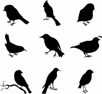 free bird silhouette vector at getdrawings com free for personal rh getdrawings com free bird vector silhouettes free bird vector download