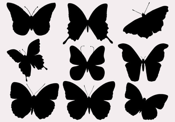 Free Butterfly Silhouette