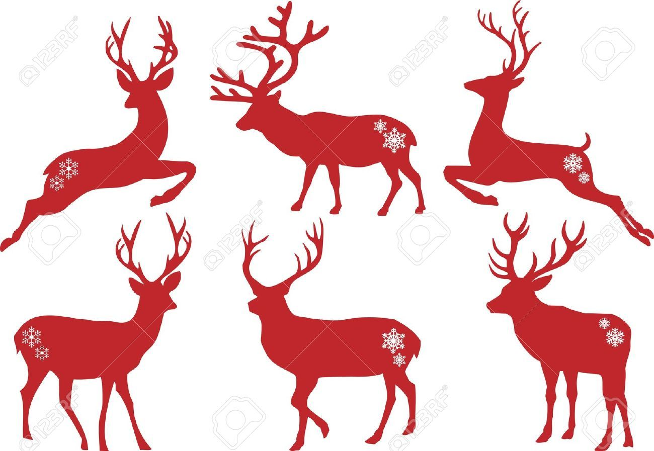 1300x897 Deer Stag In Snow Stock Photos Amp Pictures. 1,072 Royalty Free Deer