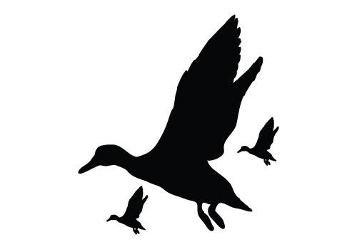 500x350 Stylish Ideas Flying Duck Silhouette Vector Free Clip Art Pattern