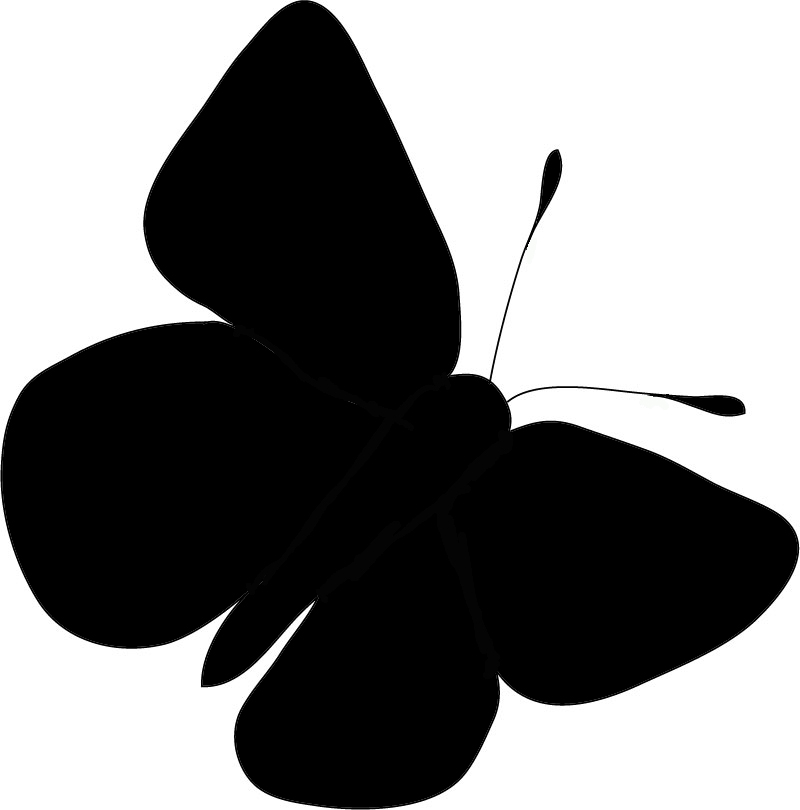 800x810 Butterfly Silhouette Free Download Clip Art On Clipart