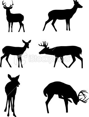 290x380 Deer Silhouettes Vector Art, Art Illustrations And Royalty