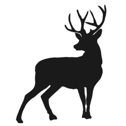 250x250 Deer Silhouette Silhouettes Silhouettes, Cricut