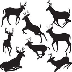 236x236 Printable Reindeer Template, Click On This Fellow's Website