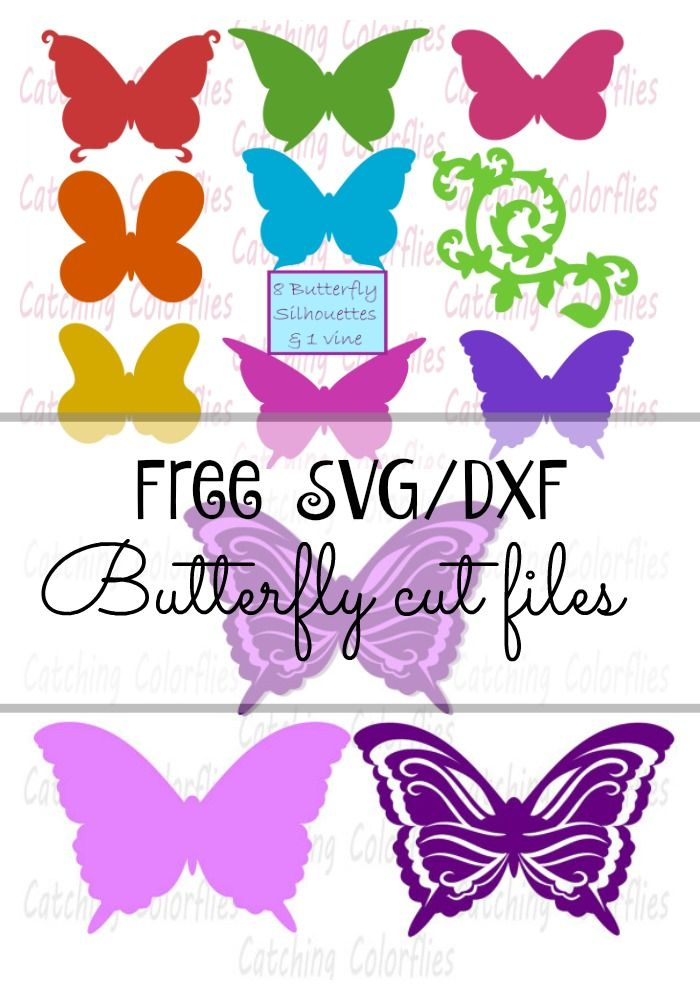700x1000 Free Butterfly Svg Cutting File For Silhouette And Cricut Freebie