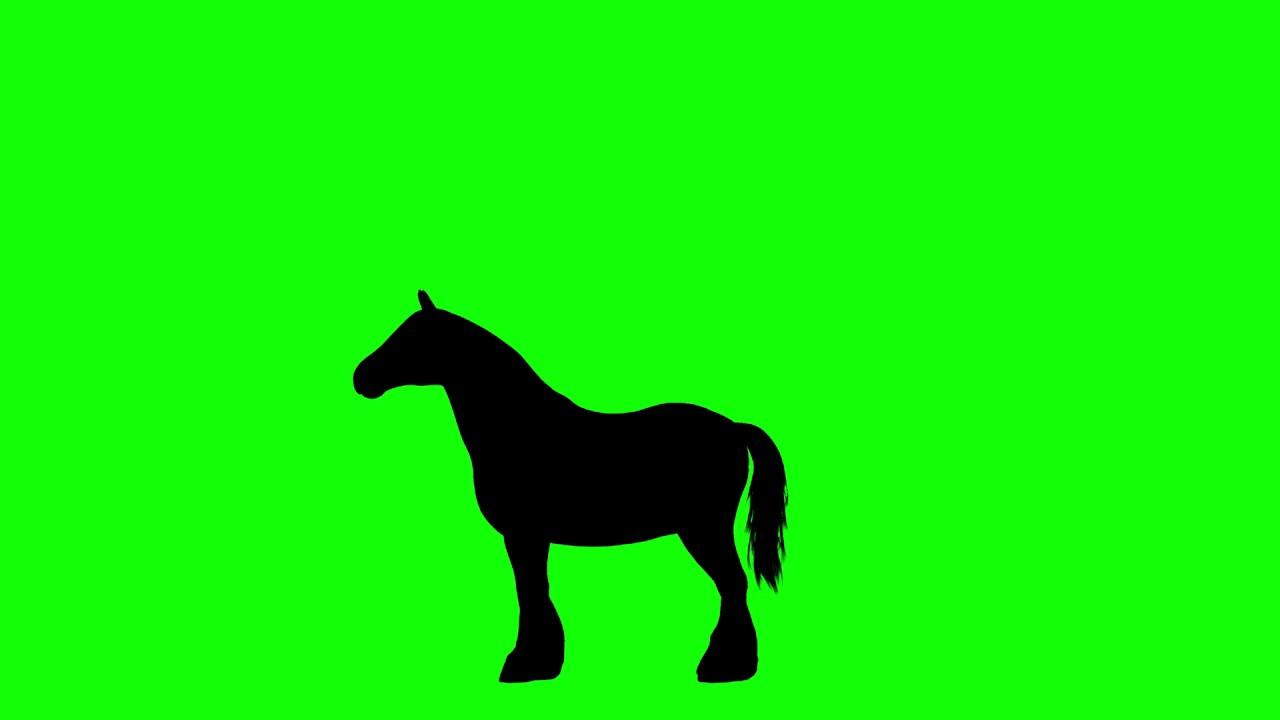 1280x720 Free Hd Video Backgrounds Farm Horse Silhouette Walking