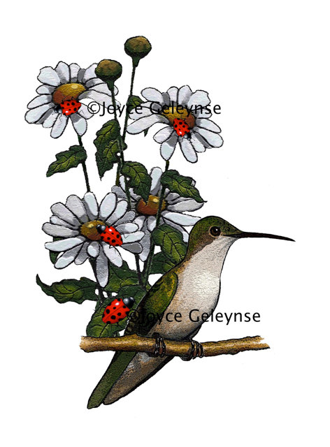 472x640 Hummingbird Clipart Hand Drawn Many Interesting Cliparts