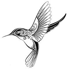 236x241 Drawn Hummingbird Graphic 3352713