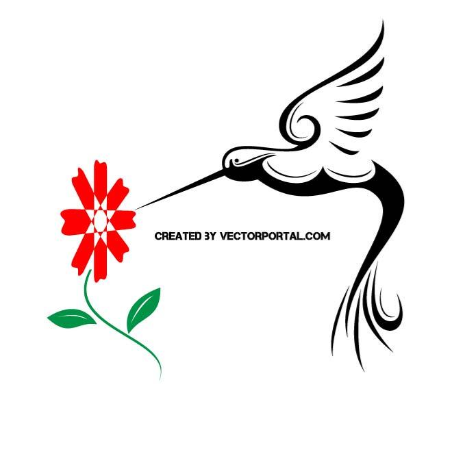 660x660 Hummingbird Free Vector