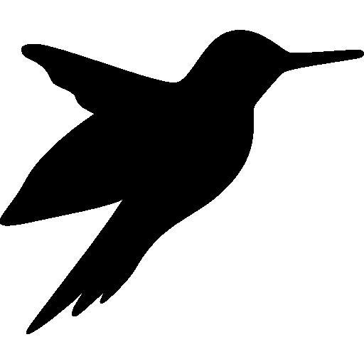 512x512 Hummingbird