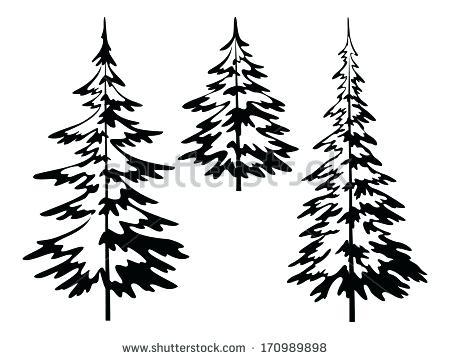 450x359 Pine Tree Vector Bsg Pine Tree Silhouette Vector Free Download