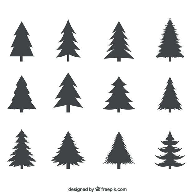 626x626 Pine Tree Vector Pine Tree Silhouette Vector Free Download Sosin