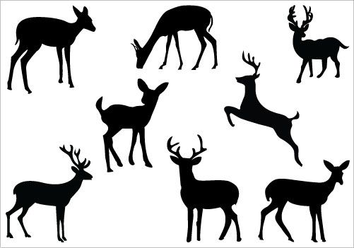 photo relating to Free Printable Deer Stencils titled Totally free Printable Deer Silhouette at  Totally free for