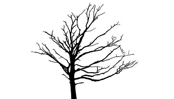 free tree silhouette vector at getdrawings com free for personal rh getdrawings com  free palm tree vector silhouette