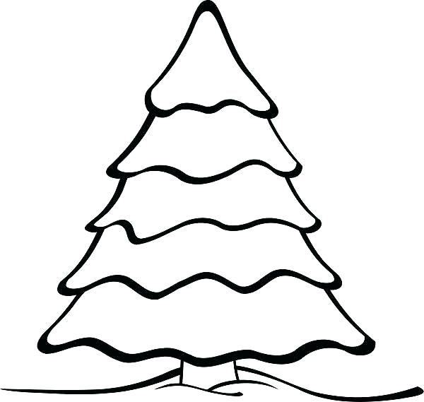 600x569 Pine Tree Outline Tattoo Printable Coloring Evergreen Tree
